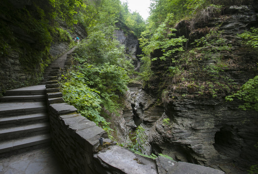 Watkins Glen State Park, in Watkins Glen, New York, on July 22, 2016. (Samira Bouaou/Epoch Times)